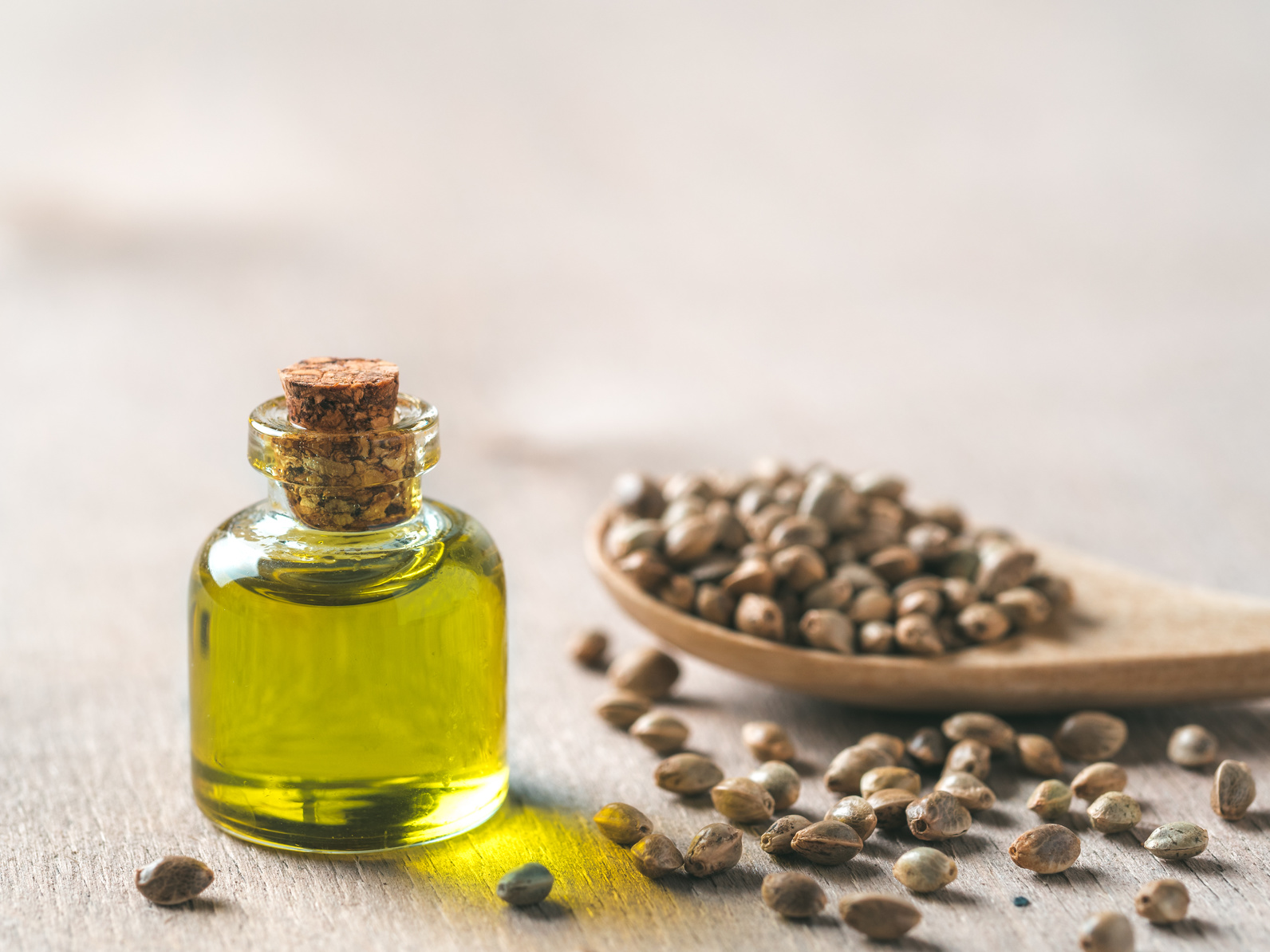 The Real Difference Between CBD Hemp and Hemp Seed Oil